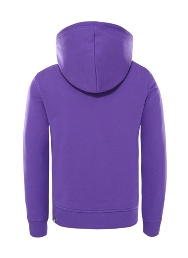 The North Face Drew Peak Pullover Hoodie Çocuk Sweatshirt Mor Mor